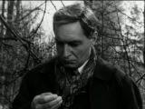 Из к/ф «17 мгновений весны» (1973) — «Мгновения» (Иосиф Кобзон).