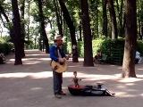 Питер. Музыкант в Летнем саду